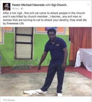 Nigerians blast Bisi Alimi after he blasted pastor who said evil cat came to attack his members